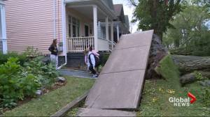 Hurricane Dorian: Maritimes clean up after storm's powerful punch