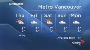 B.C. evening weather forecast: Jan. 6 (01:47)
