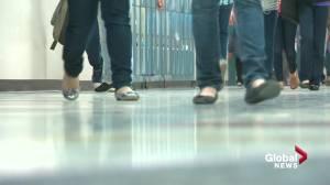 Calls for more Alberta youth-focused COVID immunization clinics as rates plateau (02:06)