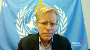 WHO adviser says the world was not prepared to fight scope of COVID-19