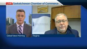 Saskatchewan Chamber of Commerce on July 11 restriction lifting (04:04)