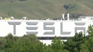 Coronavirus outbreak: California gov. looking into Tesla plant reopening against local health order