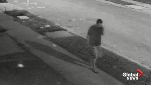 Police in London, Ont. seek public's help Identifying sexual assault suspect (00:30)