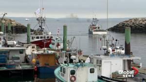 Treaty education lacks amid N.S. fisheries dispute, Mi'gmawei Mawiomi Secretariat says (02:32)
