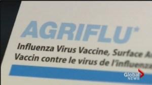 H1N1 and the flu season
