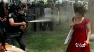 Turkey protest apology