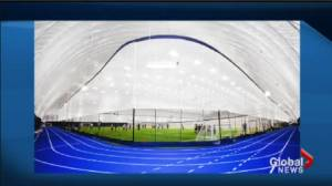 Councillor says dome over playing field will privatize a public benefit