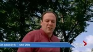 Noon News remembers James Gandolfini