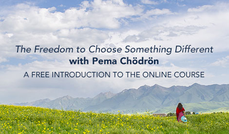 The Freedom to Choose Something Different, a FREE  introduction from Soundstrue 7 The Freedom to Choose Something Different, a FREE  introduction from Soundstrue
