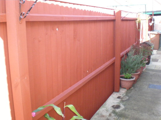 Been Painting Fence Today Red Cedar Grows On You