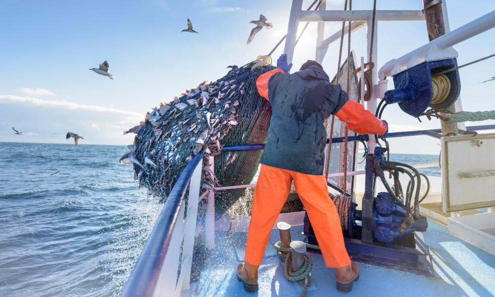 Overfishing in the unregulated high seas is a threat to many species.