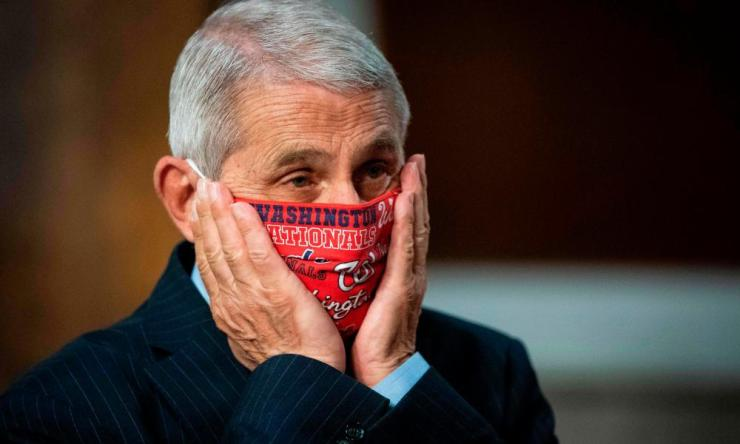 Home alone? At least Pence is wearing a mask now. Anthony Fauci in a Washington Nationals baseball team tribute mask, before testifying on Capitol Hill last week, where he repeatedly contradicted Pence and Donald Trump's misleading remarks on Covid-19.