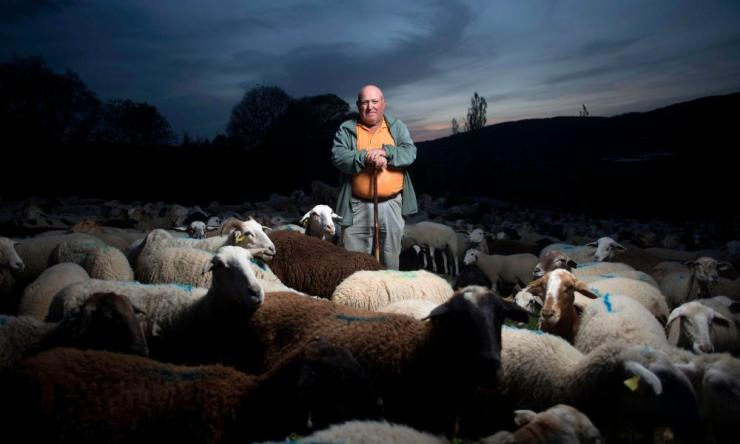 Spanish Ramon Montesinos Roman, a shepherd, poses with his flock of sheep in Ronda, on April 23, 2020 during the COVID-19 coronavirus pandemic.