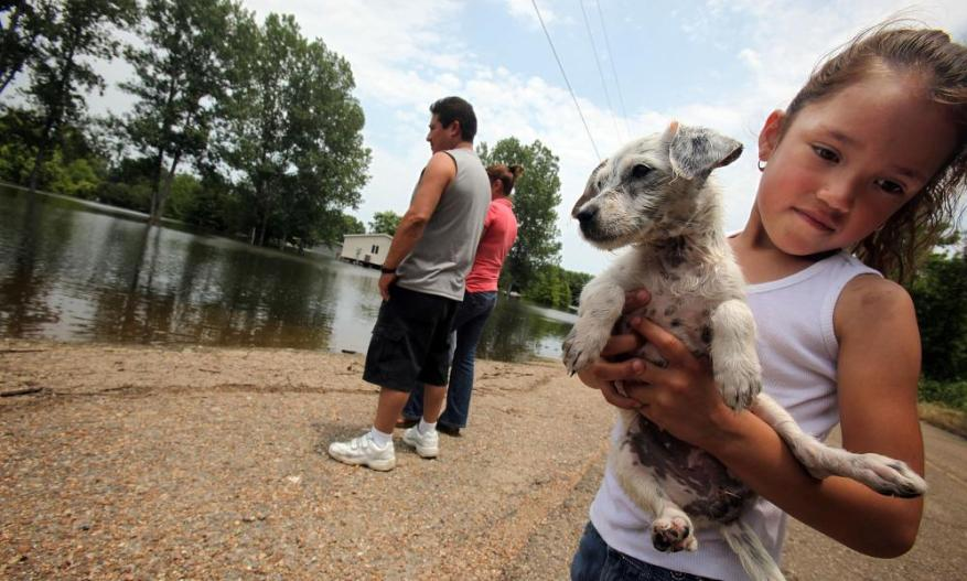 A family watches the Mississippi River floodwaters come in.