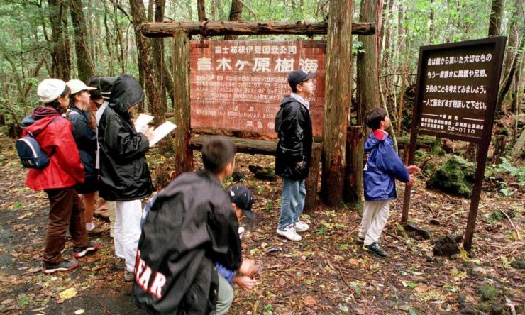 Schoolchildren read signs posted in the Aokigahara forest.