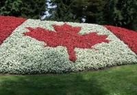 سلسله داستانهای مهاجرت به کانادا (۹) – تفاوت وکیل و مشاور مهاجرت – قسمت اول