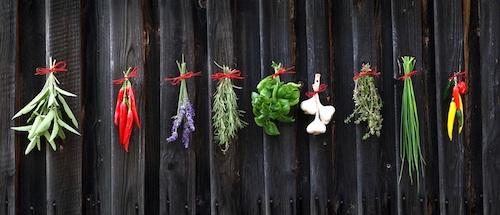 فوتوفنهای آشپزخانه - صدیقه فیروزی