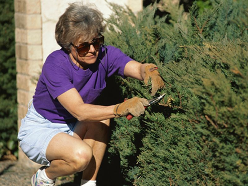 News Picture: Even Housework, Gardening Can Help an Older Woman's Heart