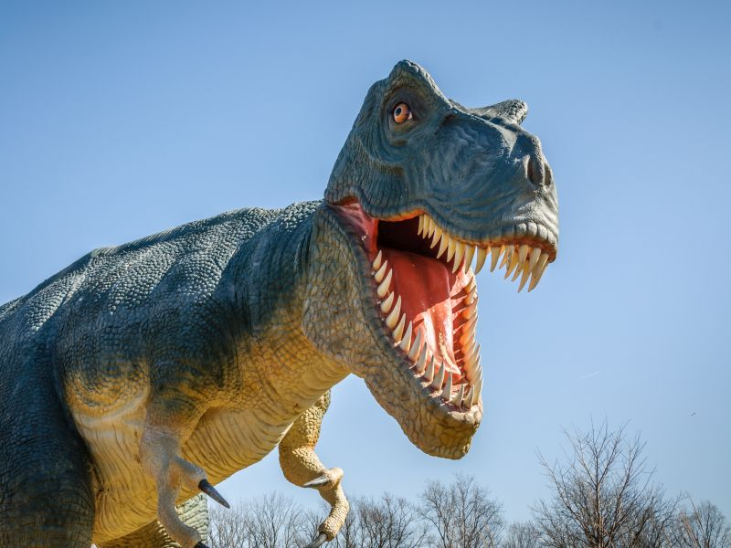 News Picture: How Giant Dinosaurs Evolved to Stay Cool
