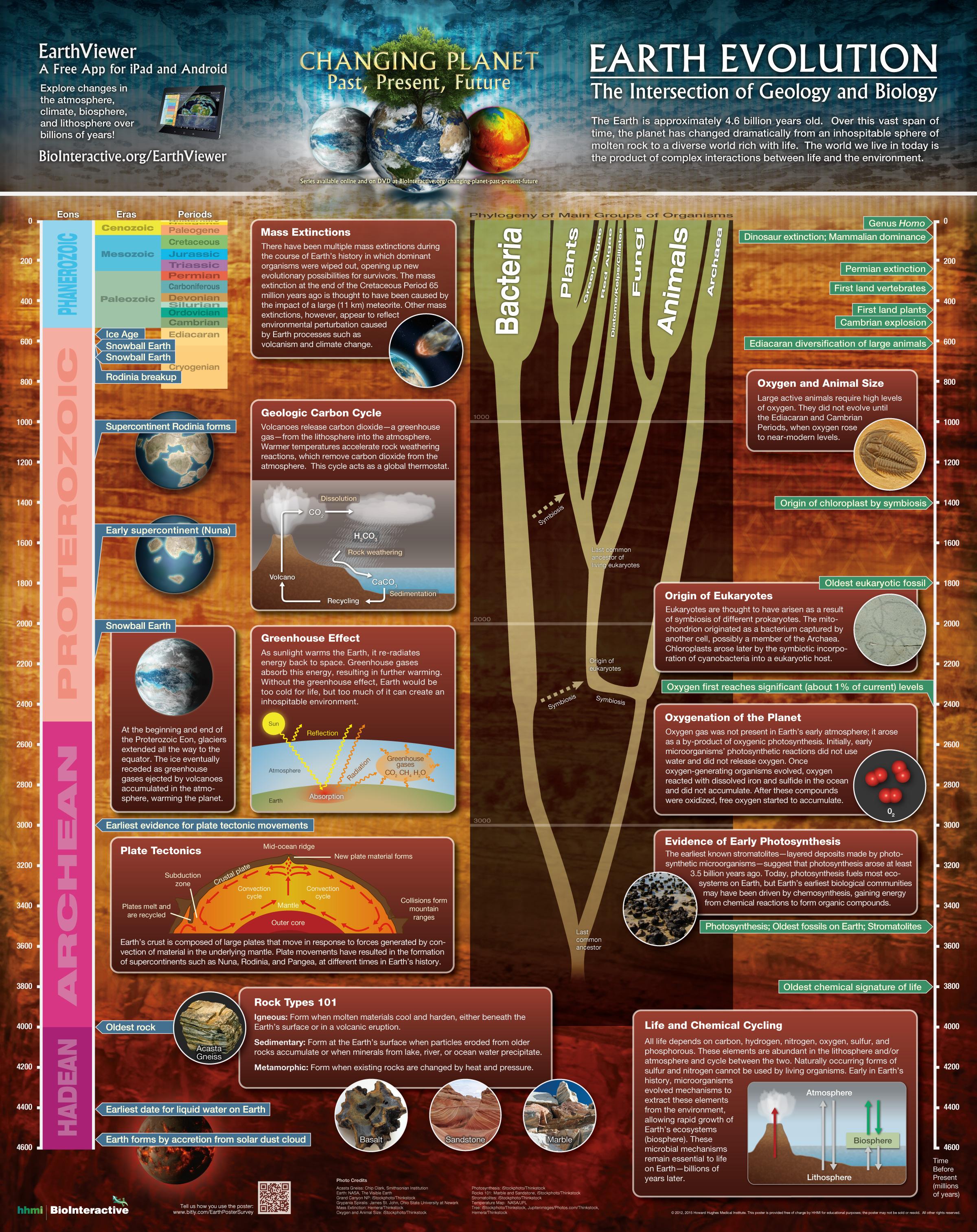 Pseudo Science Blog Free Evolution Stuff