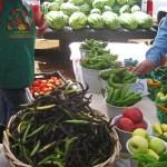 Española Farmer's Market