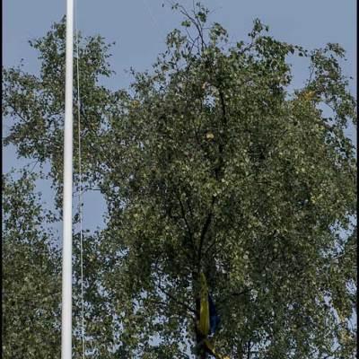 Flaggan insnärjd i träd sedan 2017