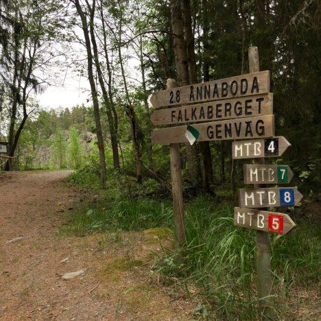 Midsommar på Bjursås Skicenter & Camping