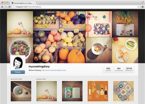 Instagram web profile (screenshot 002)