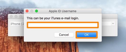 Apple ID Pangu va chạm