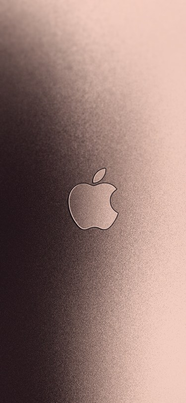 v5 with Apple Logo iPhone XS Max wallpaper ar72014
