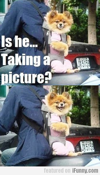 Is He Taking A Picture?