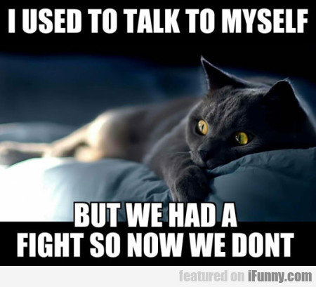I Used To Talk To Myself But We Had A Fight...
