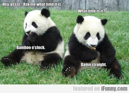 Hey, Pssst... Ask Me What Time It Is...