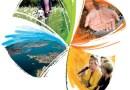 Appel à projets dans le cadre de la semaine européenne du développement durable