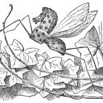 Rocking Horse Fly In Through The Lookingglass Stock Illustration Download Image Now Istock