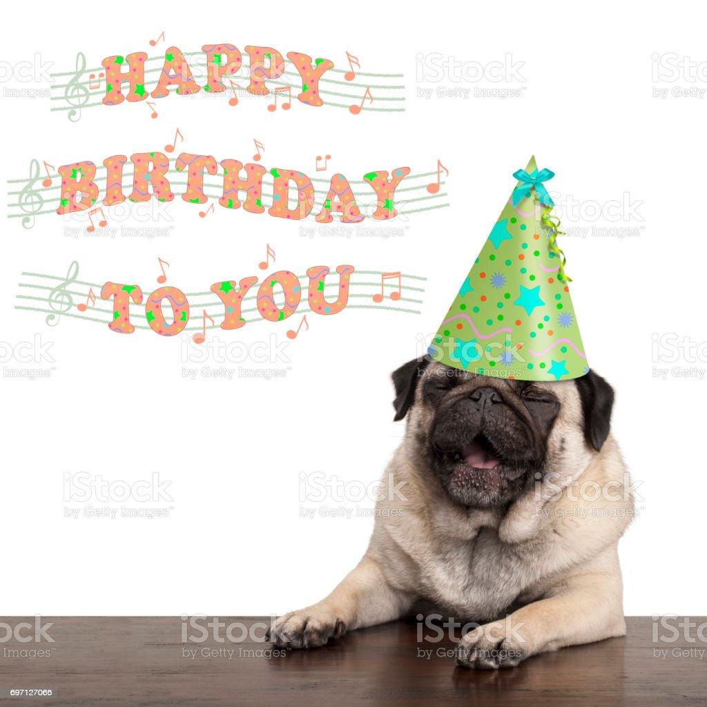 Happy Birthday Song Lustig Bilder Und Stockfotos Istock