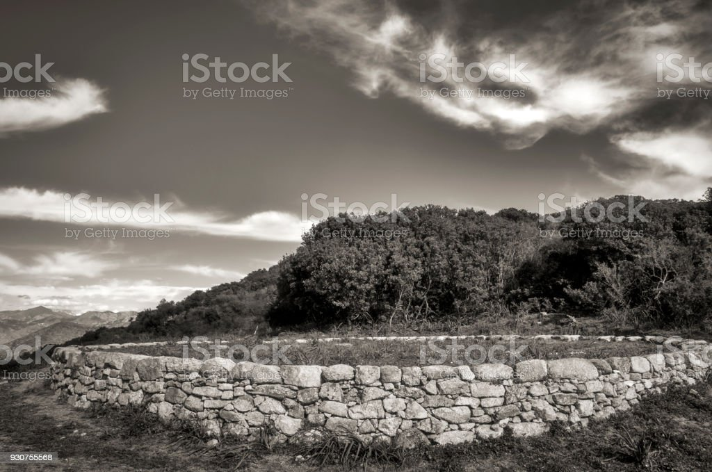 11 vintage noir et blanc stock photos pictures royalty free images istock