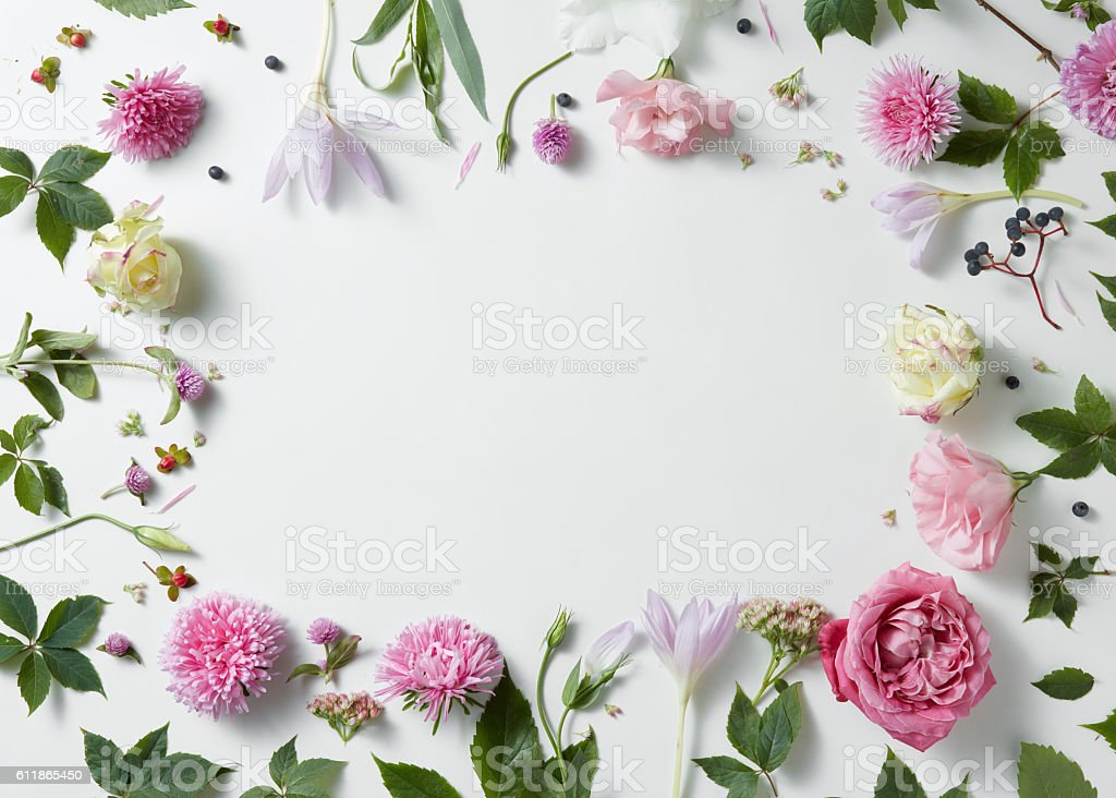 Top 60 Flowers Stock Photos, Pictures, And Images