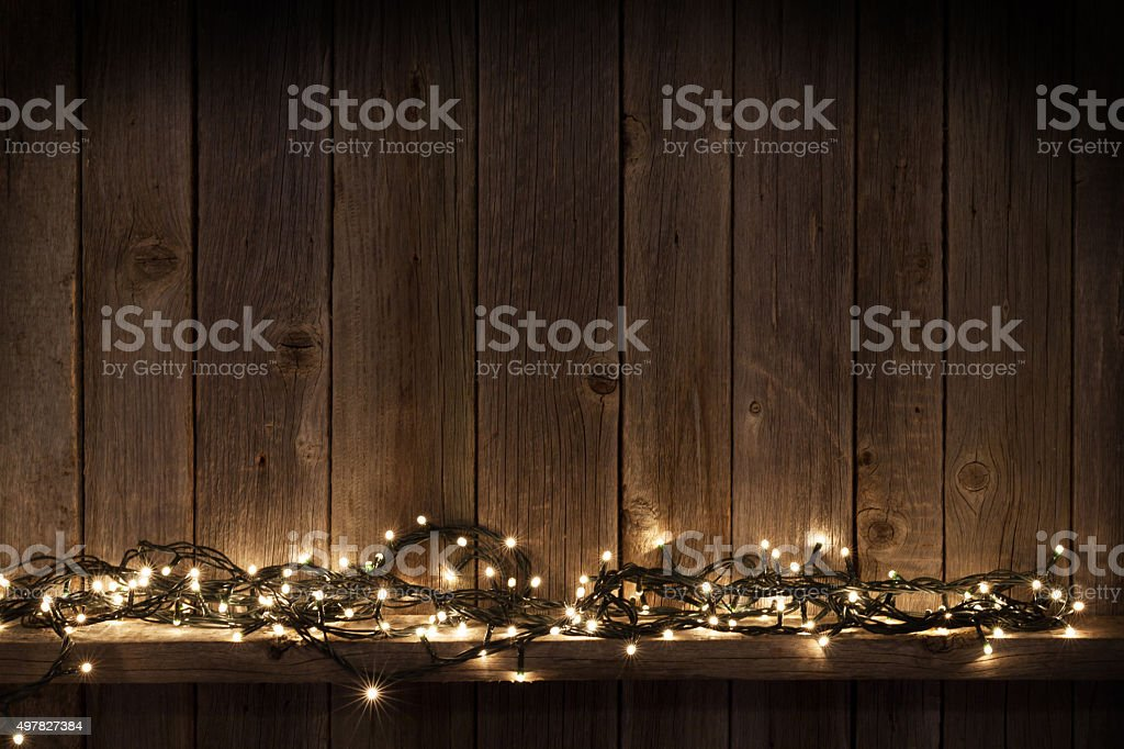 Portrait Light Bulbs