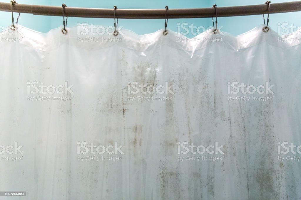 dark brown mildew mold on plastic interior shower curtain in a light aqua bathroom stock photo download image now istock