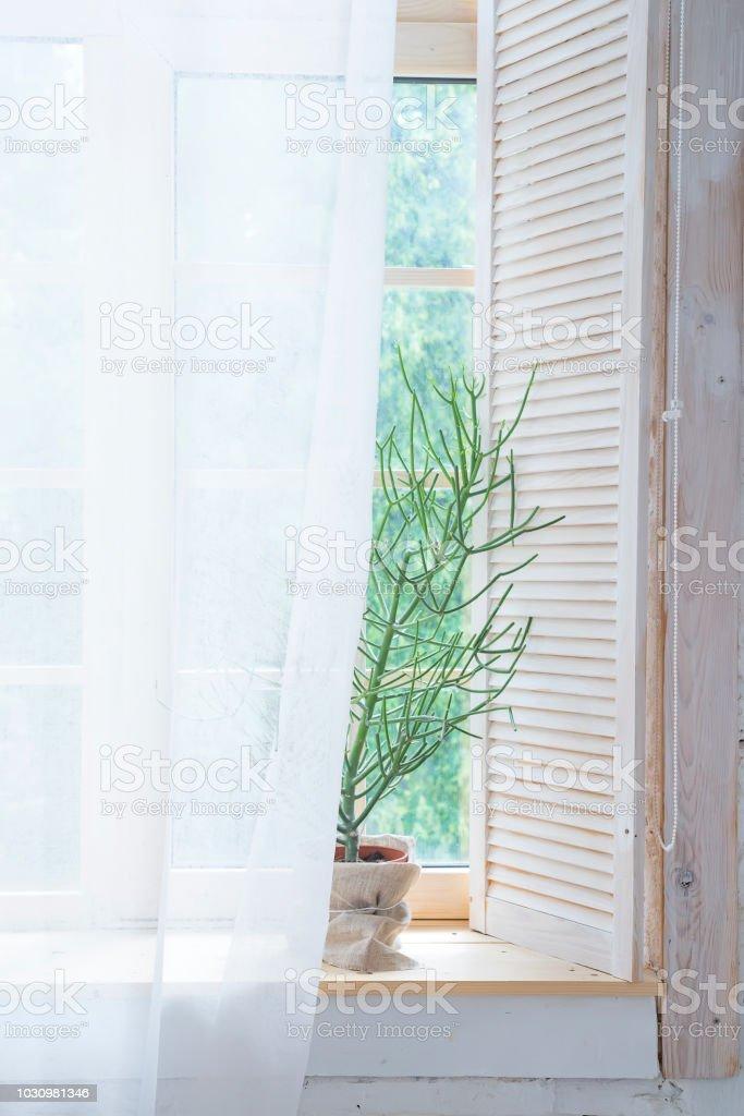 https www istockphoto com fr photo vide int c3 a9rieur avec un arbre vert et rideaux sur fen c3 aatre en bois id c3 a9e dun int c3 a9rieur gm1030981346 276201947