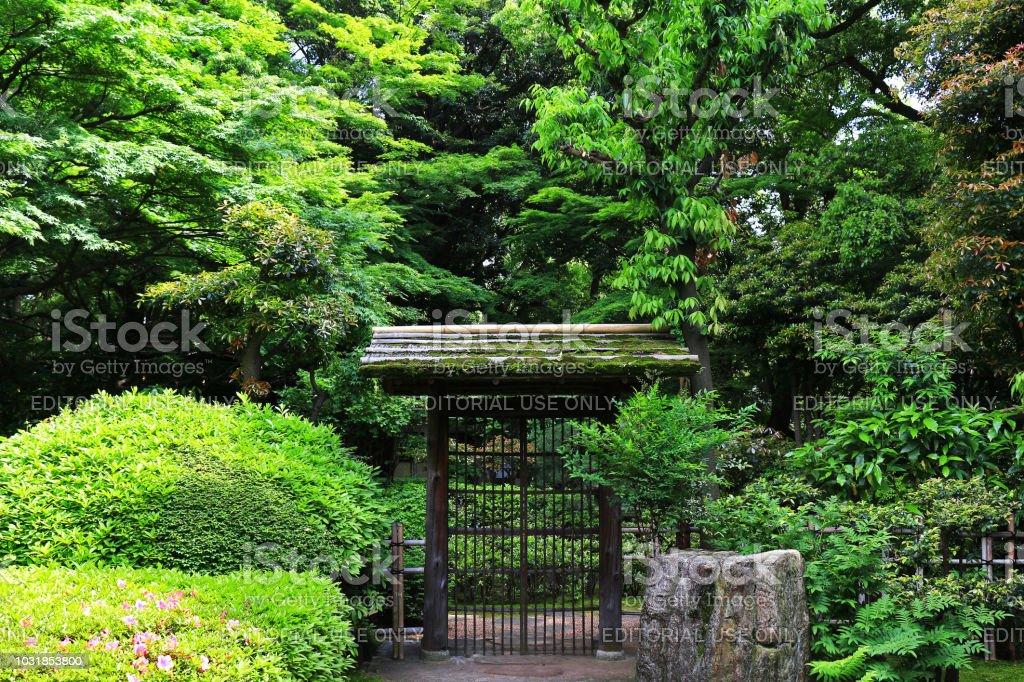 photo libre de droit de entree de style japonais jardin entoure de verdure banque d images et plus d images libres de droit de allee de jardin istock
