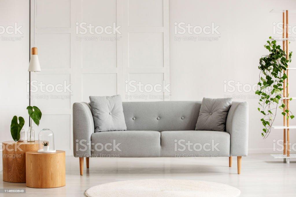Grey Modern Sofa In The Center Of Living Room Stock Photo Download Image Now Istock