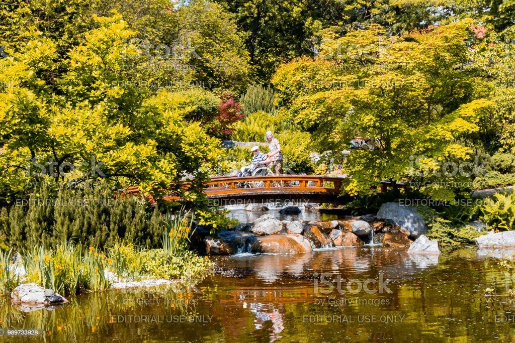 https www istockphoto com fr photo jardin japonais avec pont en bois et belle cascade gm989733928 268304972