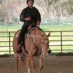 Mature Woman Training Palomino Equestrian Sport Horse Stock Photo Download Image Now Istock