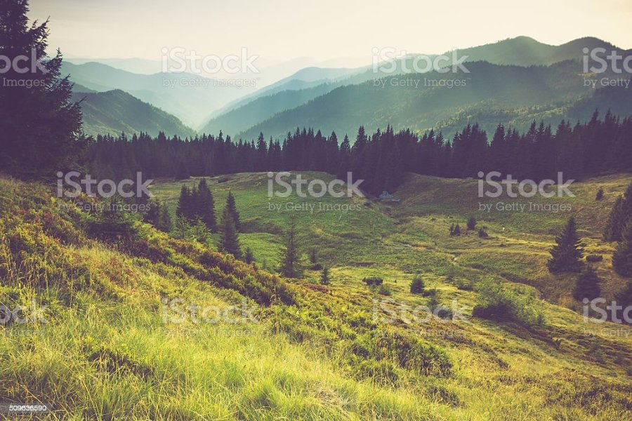 Royalty Free Landscapes Pictures  Images and Stock Photos   iStock Misty summer mountain hills landscape  stock photo