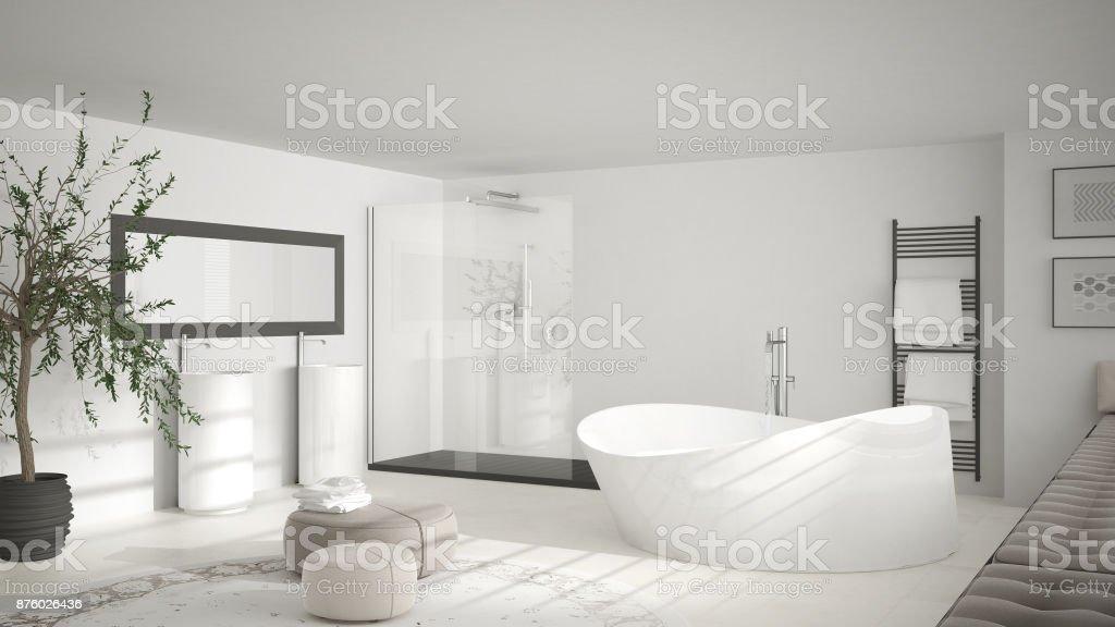 https www istockphoto com fr photo salle de bain classique moderne avec gros tapis rond d c3 a9coration minimaliste blanche gm876026436 244532641