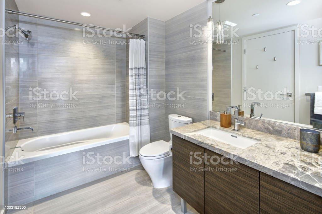 photo libre de droit de condo de style moderne salle de bains design avec carrelage gris banque d images et plus d images libres de droit de appartement istock