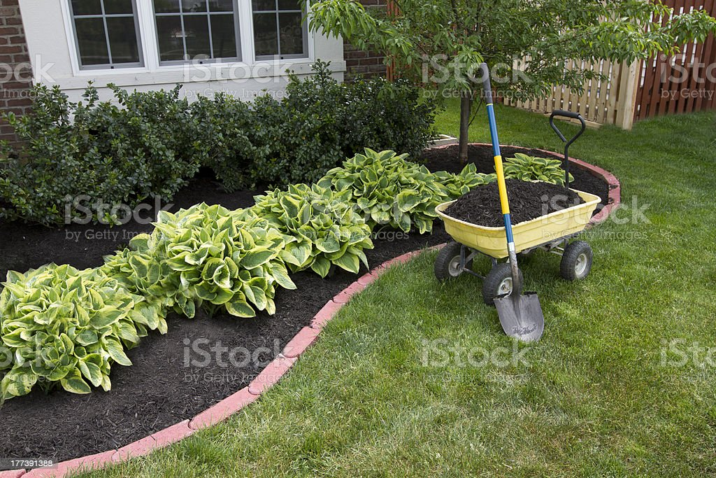 Where To Start with Landscaping and More
