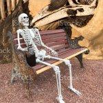 Skelett Kunst Stockfoto Und Mehr Bilder Von Amerikanischer Bison Istock